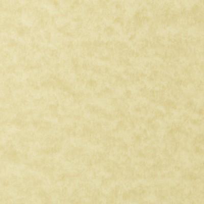 S156V